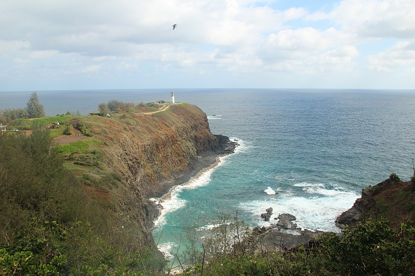 Kilauea Point